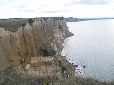 Cape Kidnappers Cliffs