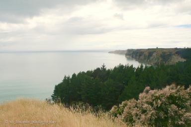 Cape Kidnappers East